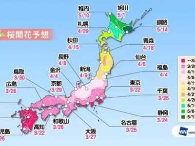 日本东京都涉谷樱花 2018年日本樱花开放时间表新鲜出炉