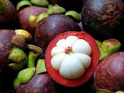 泰国水果 泰国都有哪些有名的水果